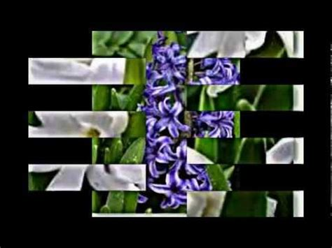Handel, Marriner - Der Messias - Amazoncom Music